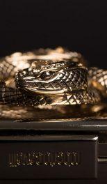 Golden-snake3